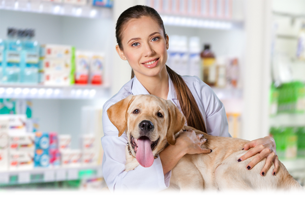 Pet store staff and pets
